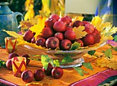 Glass bowl of maple foliage (Acer) and red apples (Malus)