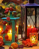 Lanterns with pillar candles, decorated with Physalis