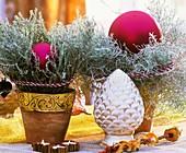 Currykraut im Topf weihnachtlich dekoriert