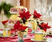 Tischdekoration mit Weihnachtsstern und gezuckerten Äpfeln