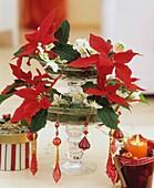Glasetagere mit Weihnachtsstern und Christrosen