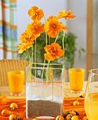 Mohnblumen in einer gläsernen Vase
