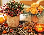 Topf mit Hagebutten, Lorbeer, Glaskugeln und Rosenblüten