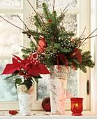 Weihnachtsstern und Gesteck aus Nobiliszweig am Fenster