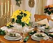 Festlich gedeckter Tisch mit Weihnachtsstern