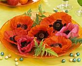 Glasschale mit Mohnblüten und -blätter