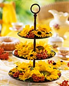 Tiered metal stand with sunflowers and Rudbeckia