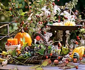 Autumn table decoration: pumpkin, grapes, rose hips