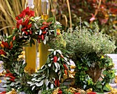 Wreath of moss, Holm oak (Quercus ilex), Capsicum frutescens