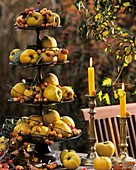 Tiered stand with quinces and ornamental apples
