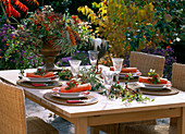 Laid table with berry decoration: rose hips, blackberries etc.