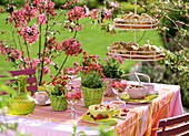Breakfast table in garden