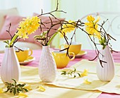 Hyazinthen mit Birkenzweigen in Vasen