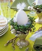 Eierbecher mit Ei und Feder, Kresse und Palmkätzchen