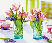 Tulips and grape hyacinths in glasses on breakfast table
