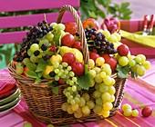Obstkorb mit Weintrauben, Pflaumen, Brombeeren und Birnen