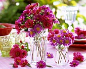 Asters in glass vases