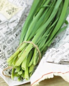 Garlic chives on Asian newspaper