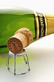 Champagnerflasche mit Korken und Agraffe