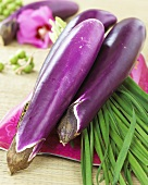 'Ping Tung Long' aubergines from Taiwan