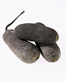 Black winter radish (Raphanus sativus ssp. niger)