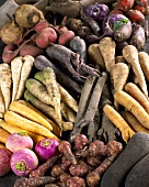 Assorted root vegetables