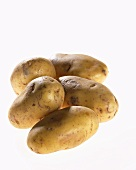 Five potatoes, variety 'Nicola'