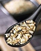 Rice mixture on Asian spoon