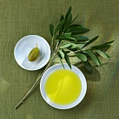 Green olive, olive branch and olive oil