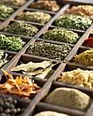 Various dried herbs and spices in type case