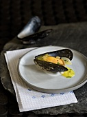 Mussel with garlic and saffron sauce (tapas)
