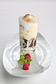 Dark and white chocolate ice cream with milk froth in glass