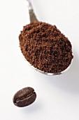 Ground coffee on spoon, coffee bean