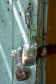 Plants in jars on old wooden door