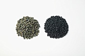 Puy lentils and Beluga lentils