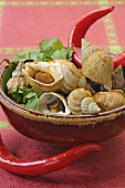 Whelks with curry powder and chillies