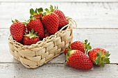 Several strawberries in and beside small basket