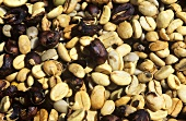 Coffee beans (unroasted)
