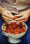 Woman holding a colander full of fresh strawberries