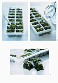 Freezing herbs in an ice cube tray
