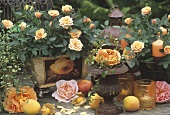 Summer decoration of roses and fruit