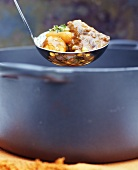 Beef stew with vegetables in ladle