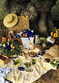 Fruit, vegetables, cheese, rolls etc. on picnic cloth