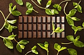 Bar of chocolate with mint leaves