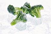 Gefrorene Brokkoliröschen auf Eis