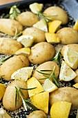 Sesame potatoes with lemon and rosemary on baking tray