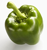 A green pepper with drops of water