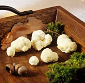 Lion's mane mushrooms on wooden tray