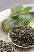 Green tea (dried tea leaves) and mint