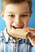 Boy eating an ice cream sandwich